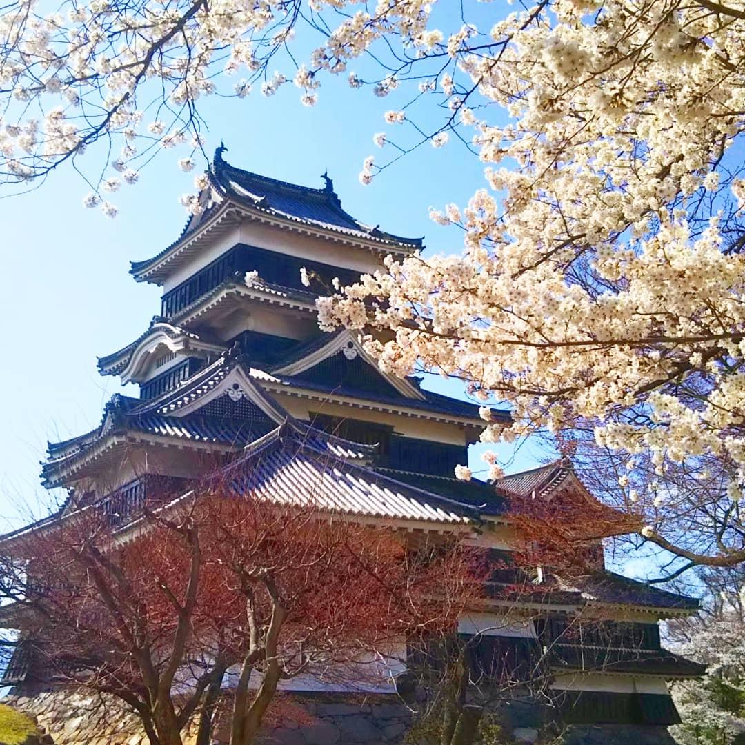 le château au printemps