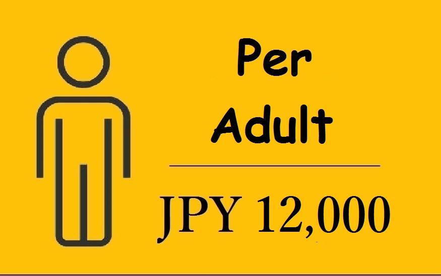 Matsumoto Castle Tour & Samurai Experience adult