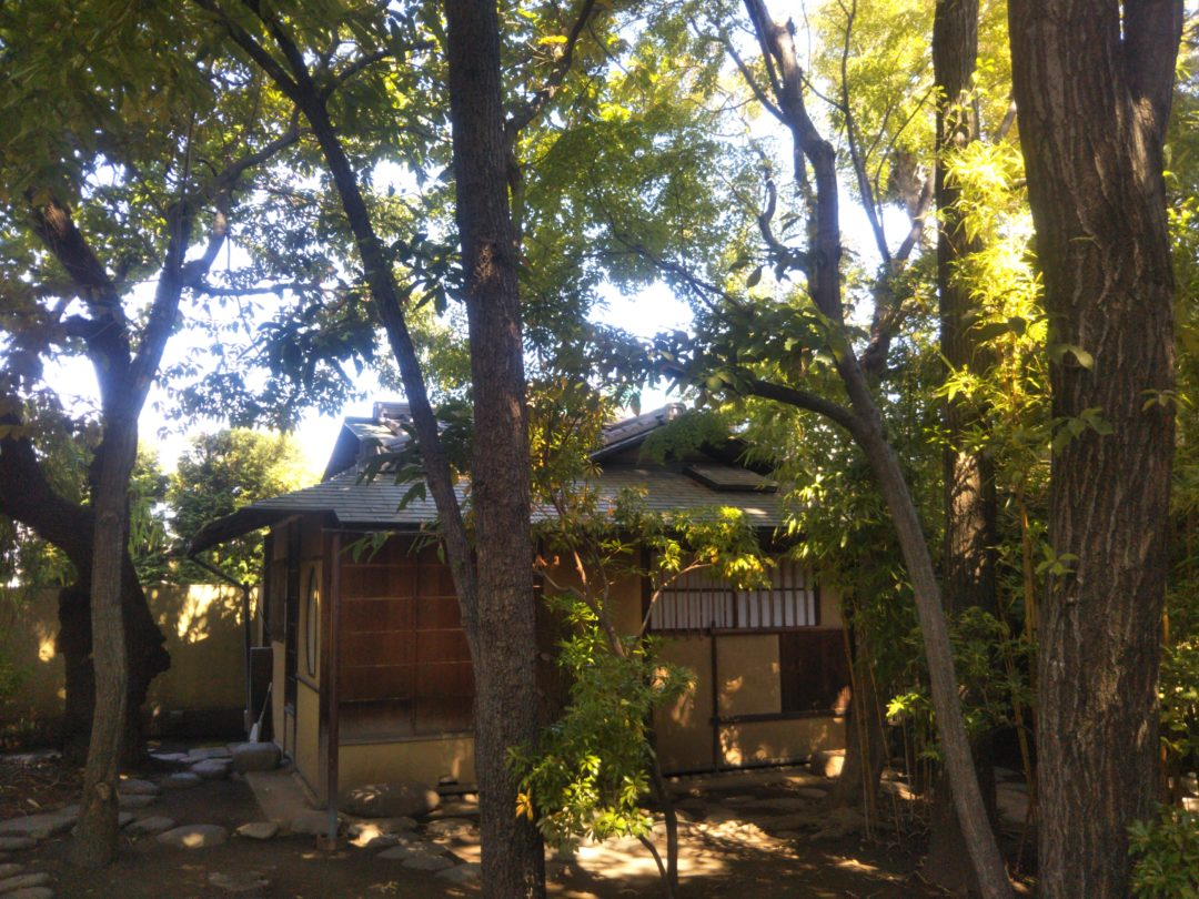 Matsumoto's Hidden Treasure garden