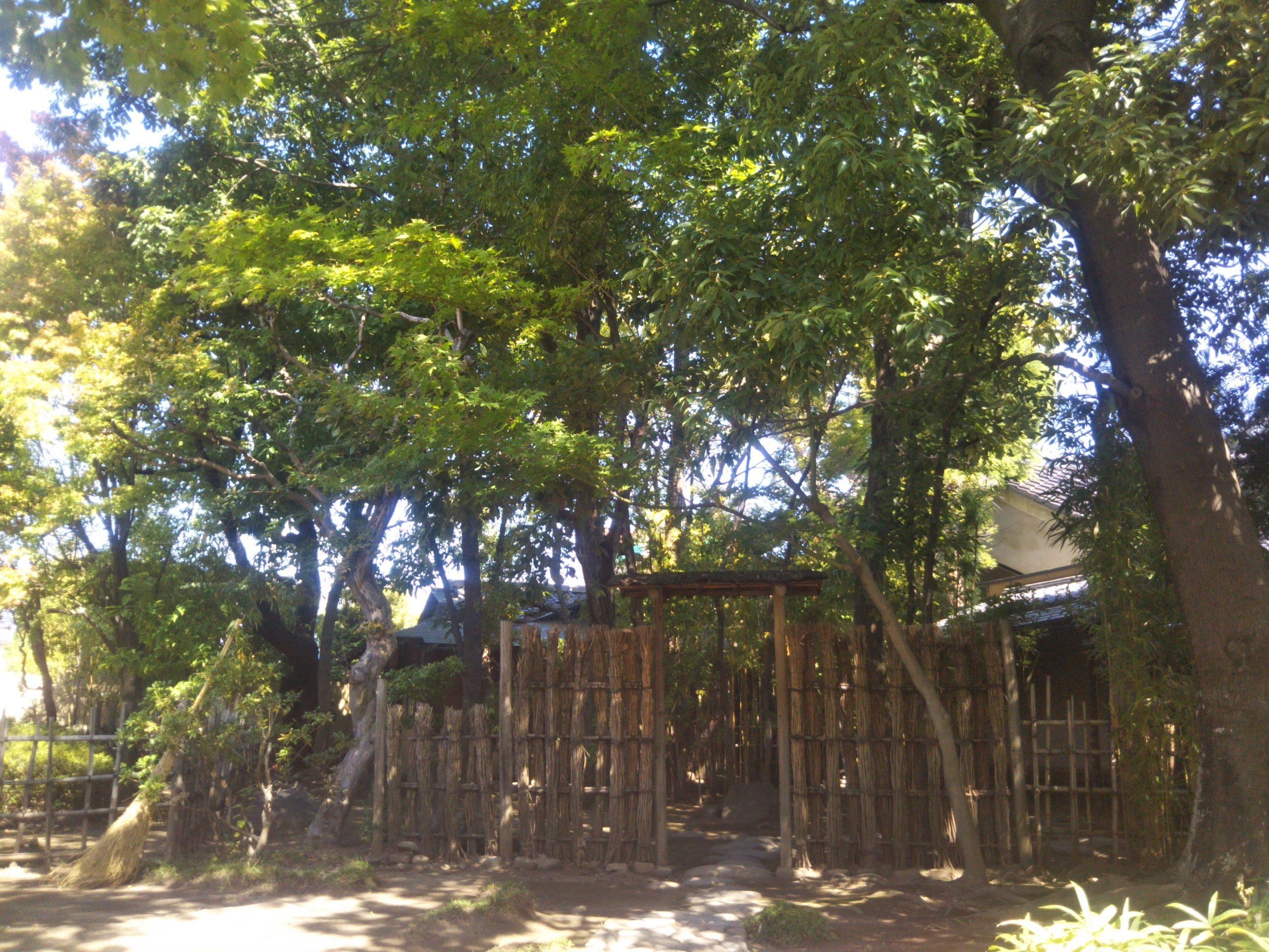 Maison de Thé Ikegami cérémonie