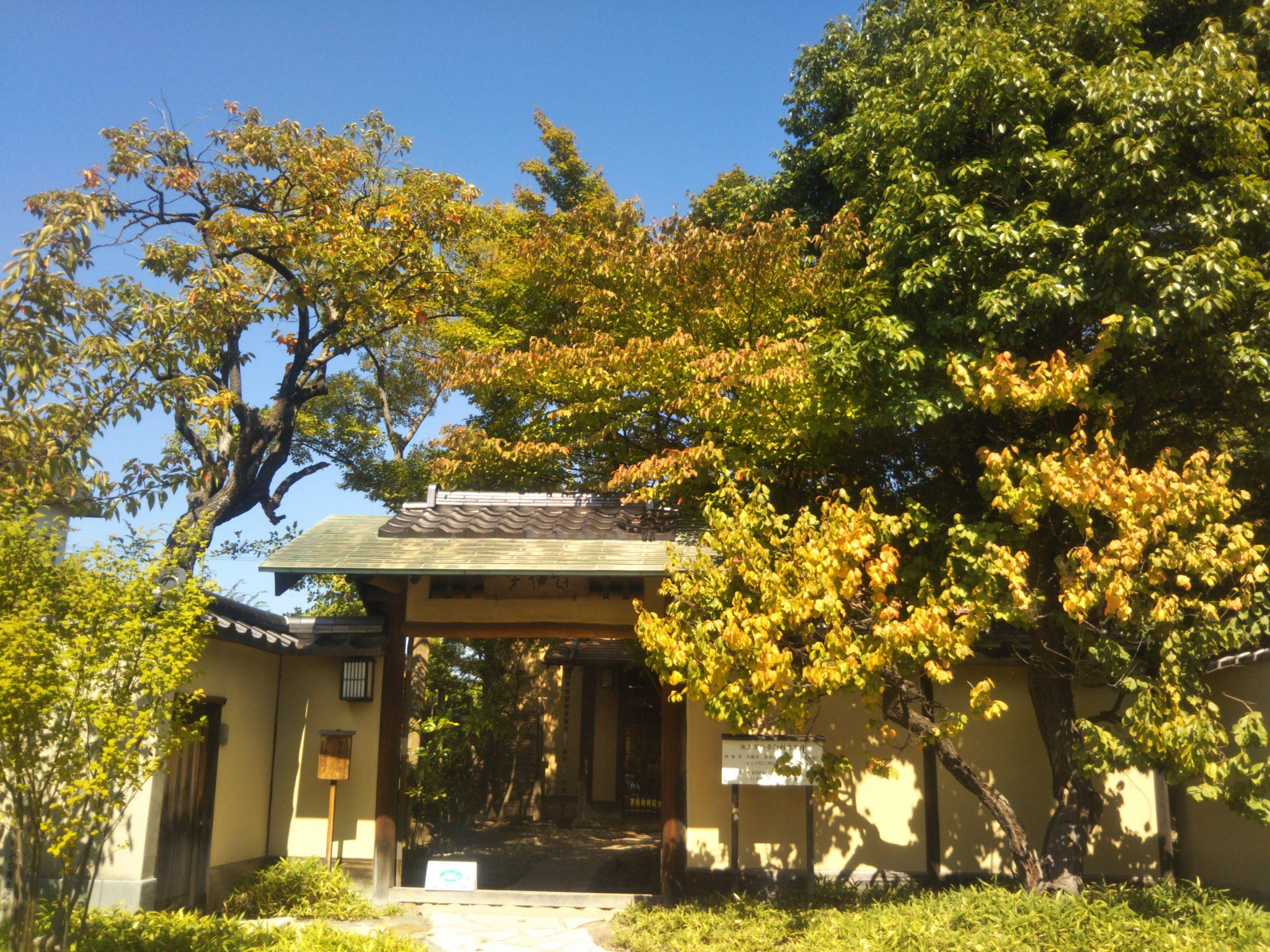 Maison de Thé Ikegami Matsumoto