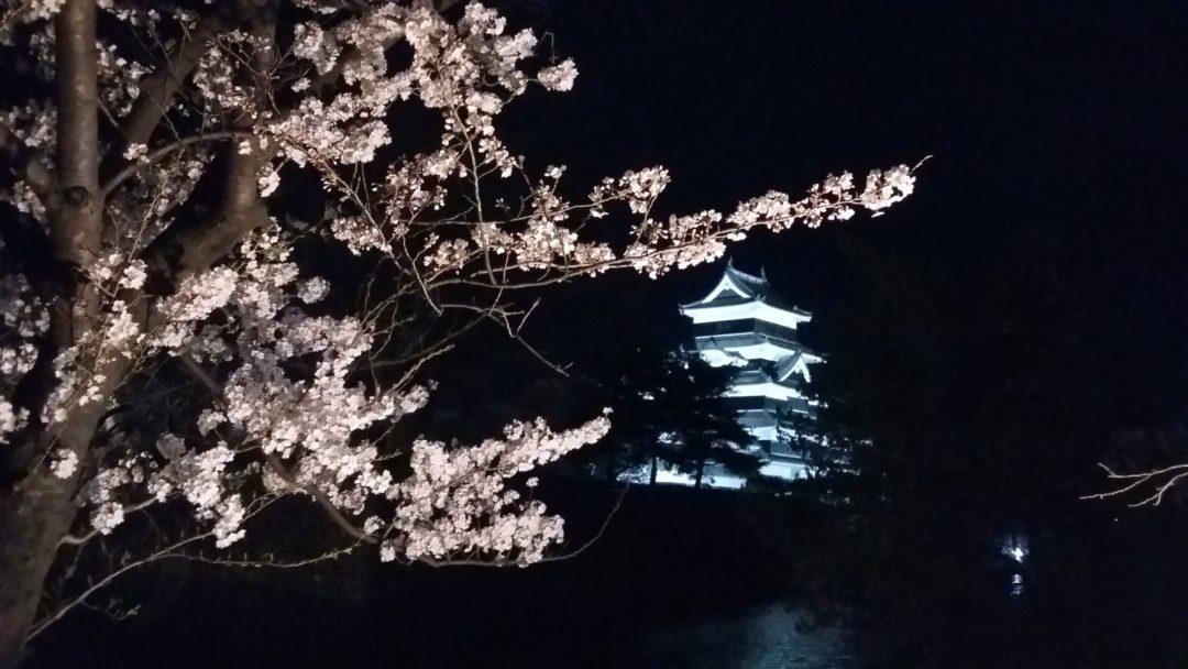 Sakura au Château de Matsumoto culture