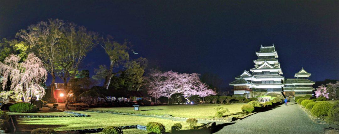 Sakura au Château de Matsumoto panorama
