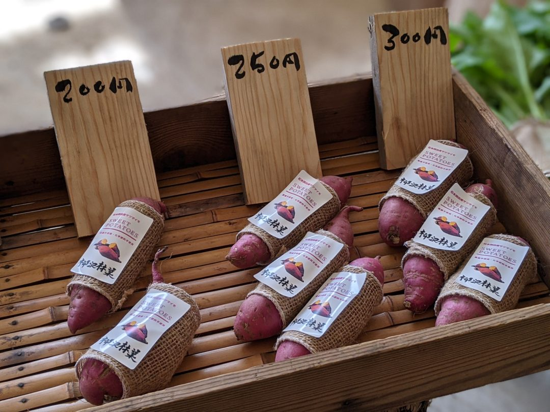 matsumoto patates satsumaimo